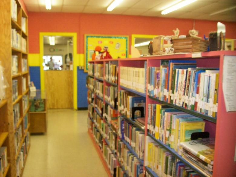 A view of the juvenile videos and fiction books.